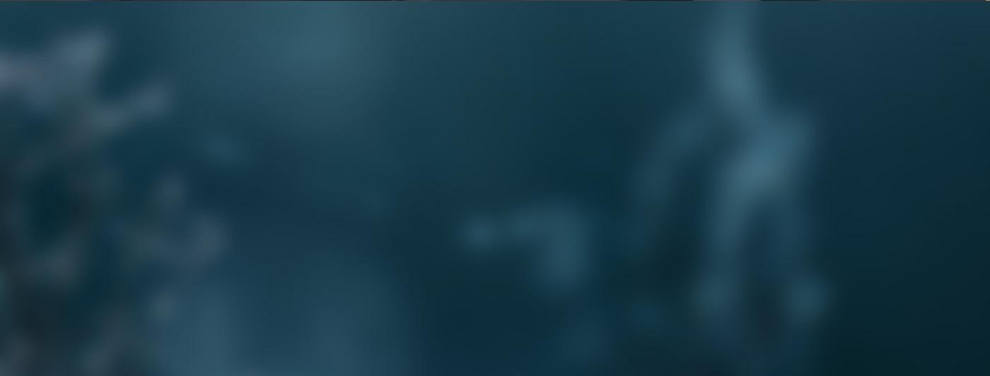 StockBanner2.jpg